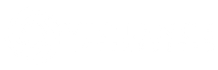 Violence Interrupted logo